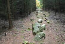 Kounov kamenné řady