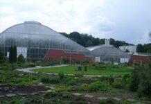 Botanic zahrada Teplice