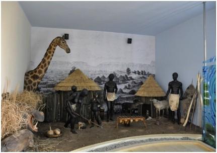 africke muzeum Emil Holub