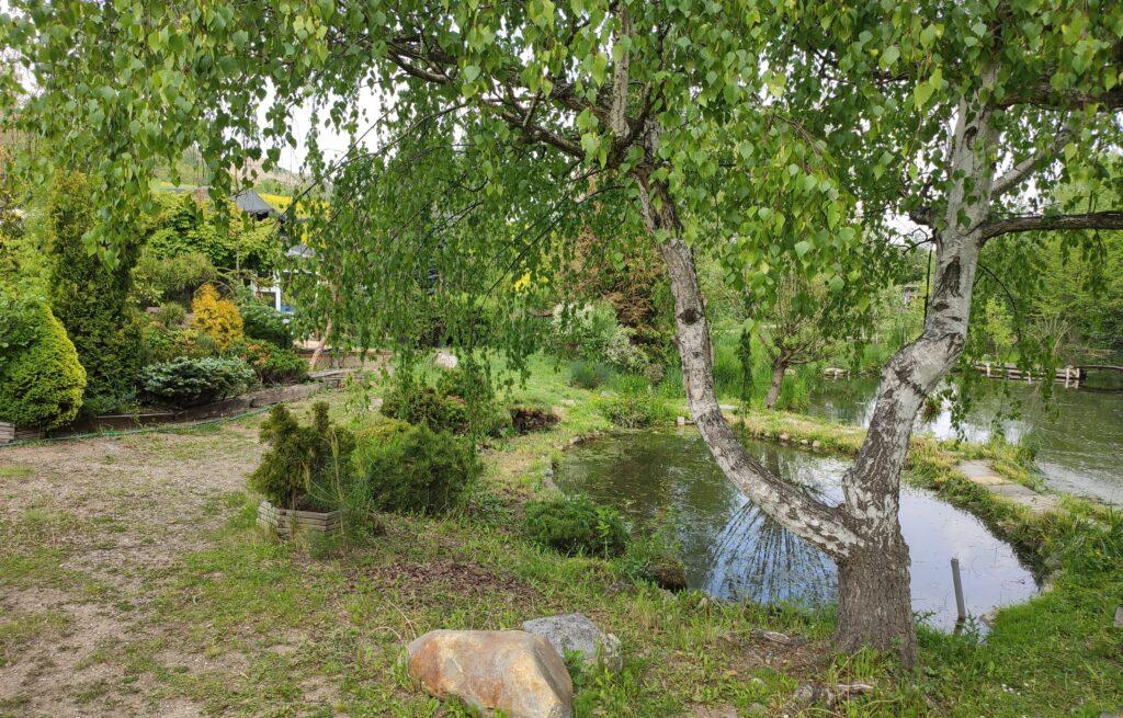 vodni park