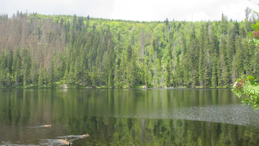Prasilske jezero