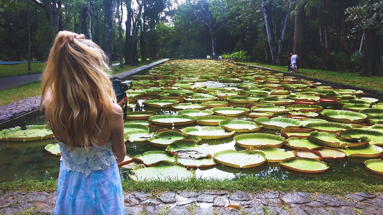 Botanická zahrada Mauricius