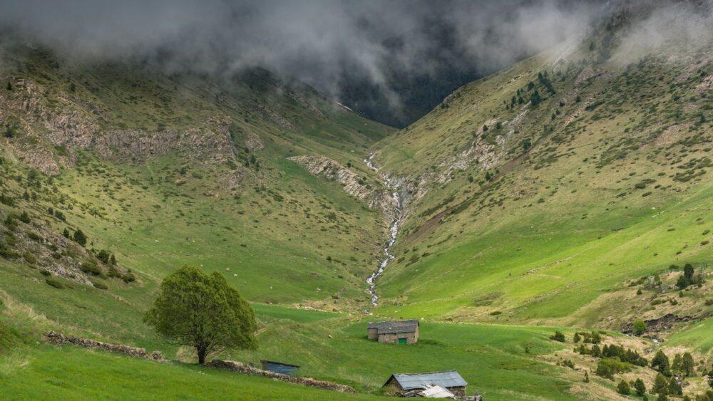 Farma-Pyreneje