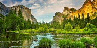 Krajina v národním parku Yosemite