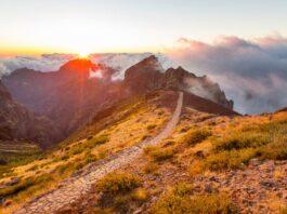 Příroda na ostrově Madeira