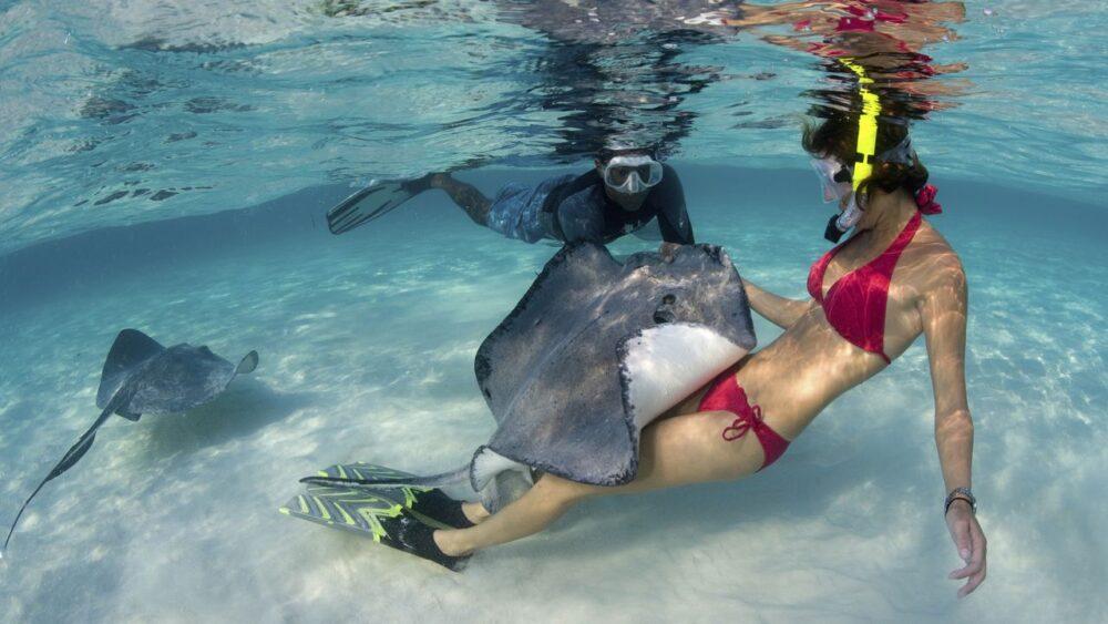 Potápění v Karibiku