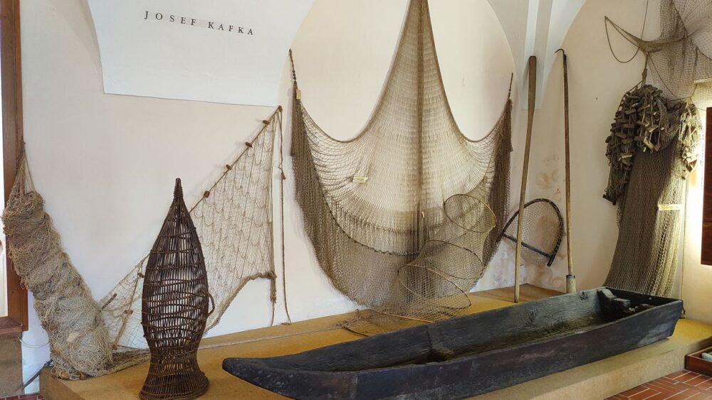 Exponáty rybolov - zámek hluboká