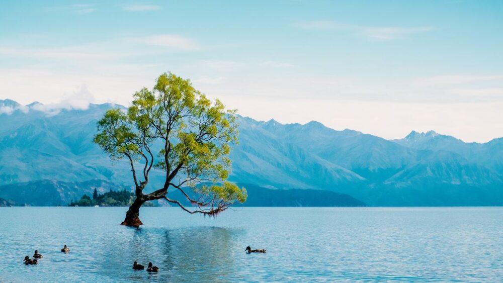 Jezero-Wanaka-na-Novem-Zelandu
