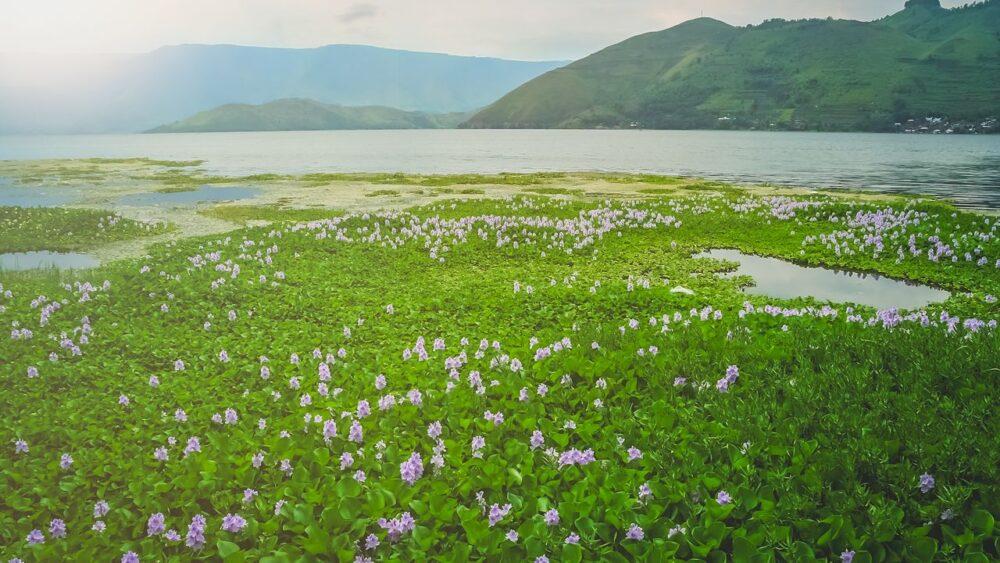 Jezero Toba na Sumatře