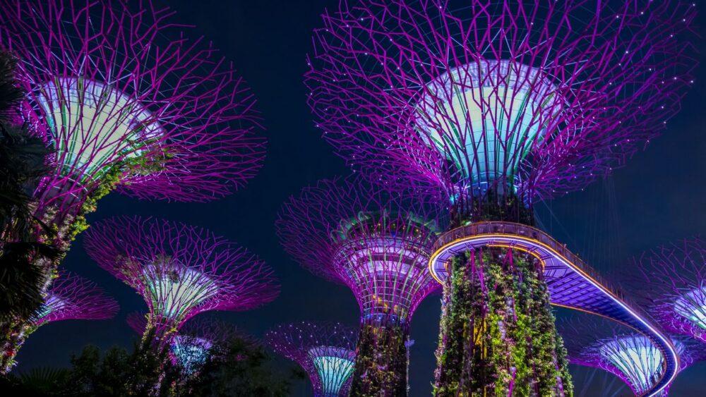 Osvělení v Singapuru