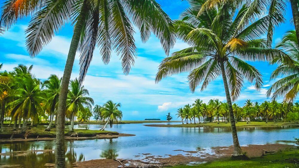 Příroda na Sumatře