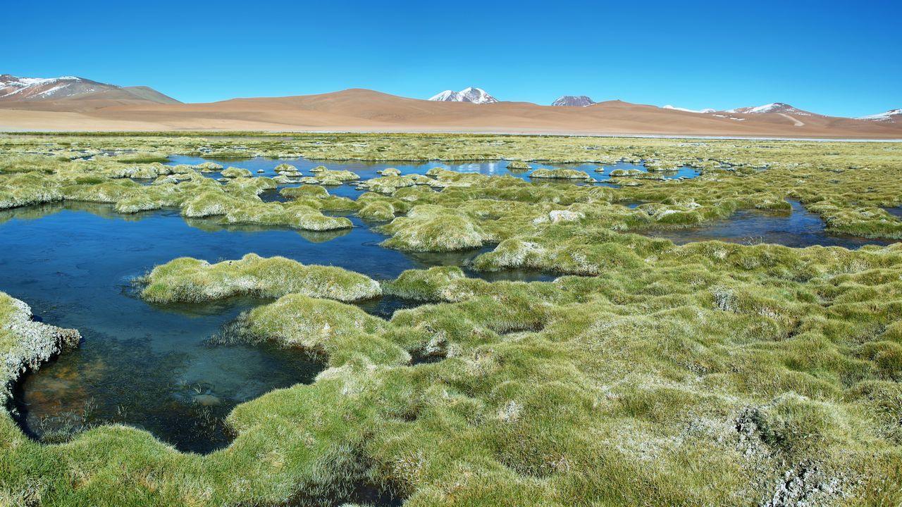 Quepiaco laguna - Chile