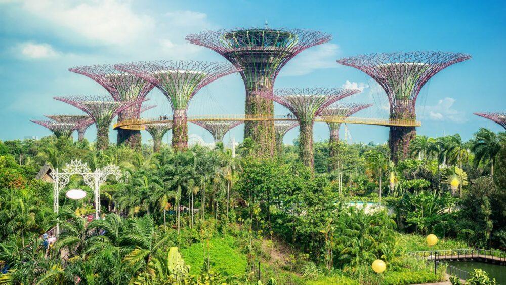 zahrada v Singapuru