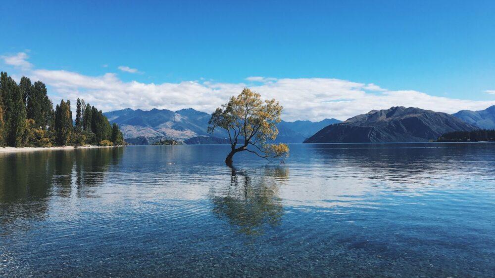 Strom-na-jezere-Wanaka