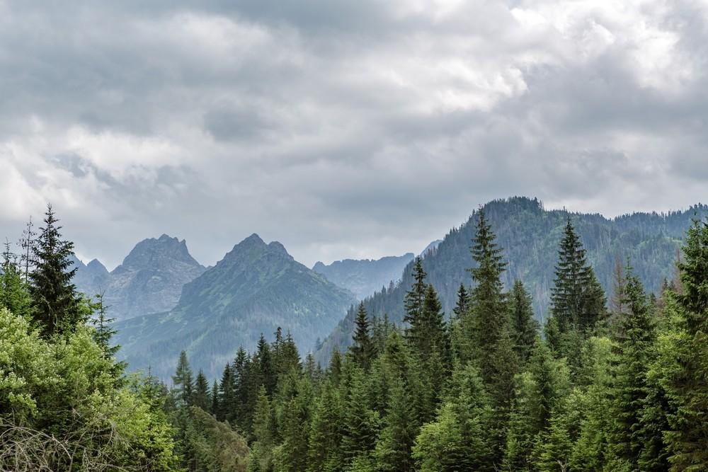 Slovenské Tatry