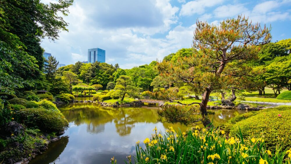 Zahrada Shinjuku Gyoen Tokio