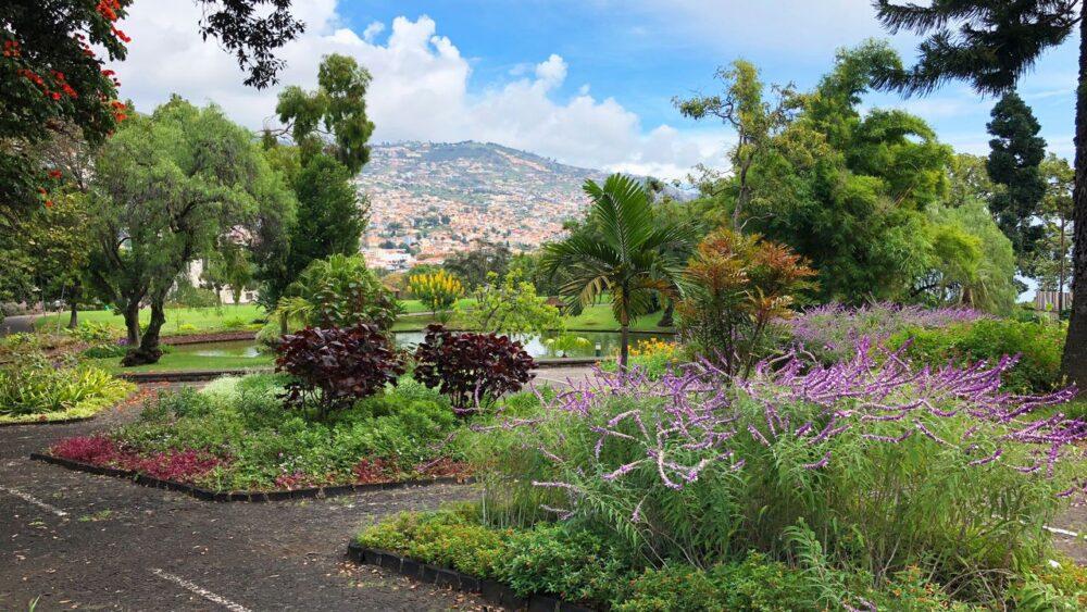 Zahrada na Madeiře