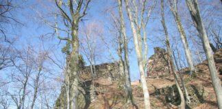 zrícenina hrad bradlec