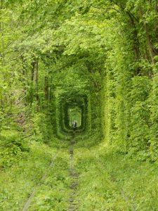 tunel lasky