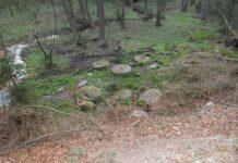 Zvanovicky potok