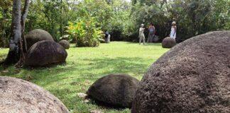 kamenne koule