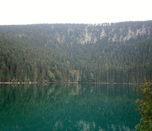 cerne jezero sumava
