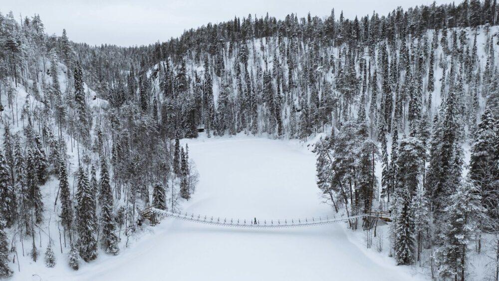 Lesy-ve-finsku